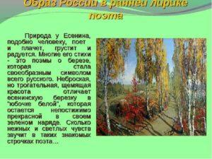 Природа в лирике С. Есенина