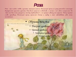 Маленький принц характеристика образа Розы