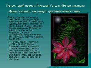 Краткое содержание повести Вечер накануне Ивана Купала Гоголя Н.В.