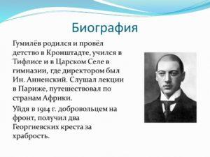 Биография Гумилева Н.С.