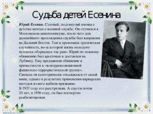 Сергей Есенин. Жизнь и судьба