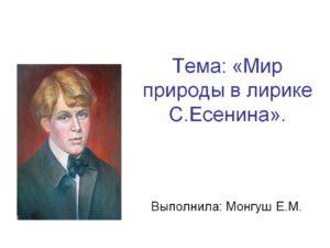 Мир природы в лирике С. Есенина