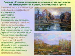 Тема природы в творчестве С. Есенина